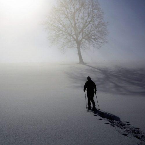 Winter Sieger